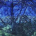 Rhapsody Of Colors 65 by Elisabeth Witte