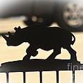 Rhino by Kim Henderson