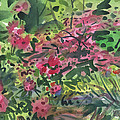 Rhododendrons And Azaleas by Donald Maier