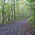Richland Mine Trail by David Troxel