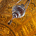 Richly Decorated Ceiling by Gaspar Avila