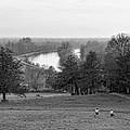 Richmond Hill  by Jasna Buncic