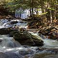 Ricketts Glen State Park by John C McPherson