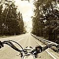 Riders Eye Veiw In Sepia by Micah May