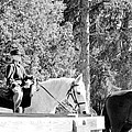 Riding Soldiers B And W IIi by LeeAnn McLaneGoetz McLaneGoetzStudioLLCcom