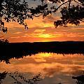 Rifle Rive State Park Sunset by Jennifer  King