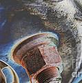Rim Closeup by Shannon  Dunleavy