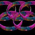 Rings by Steve Purnell