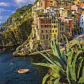 Rio Maggiore Cinque Terre Italy by Fred J Lord