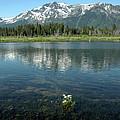 Ripples On Lake Of Mt Tallac by LeeAnn McLaneGoetz McLaneGoetzStudioLLCcom
