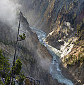 Rising Mists From Grand Canyon Of The Yellowstone by Greg Nyquist