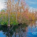 River Bend by Scott Hervieux