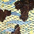 River By Twelve Panel 8 by Dodd Holsapple