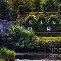 River Cottage by Ian Mitchell