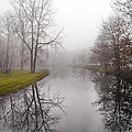 River In The Fog by Fran Gallogly