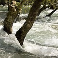 River Manavgat In Flood by Bob Gibbons