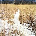 River Of Snow by Annella Grayce