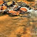 River Rock Swirl by Adam Jewell