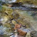 River Rocks by Jenna Szerlag