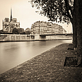 River Seine And Cathedral Notre Dame by Brian Jannsen