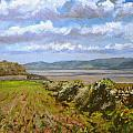 River Severn View by Andrew Taylor
