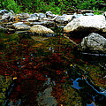 River Water And Rocks by Ester  Rogers
