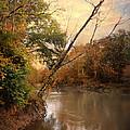 Riverbank 1 by Jai Johnson