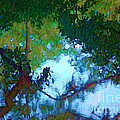 Riverbank Reflections2 by Herb Paynter