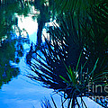 Riverbank Reflections3 by Herb Paynter