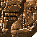 Riverboat On Ancient Seal by Science Source