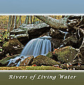 Rivers Of Living Water by Michael Peychich