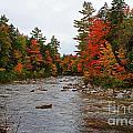 Rivers Run Through It..fall Brilliance by Lloyd Alexander
