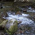 Rivers-streams-creeks - 0038 by S and S Photo