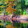 Riverside Park by Bill Barber