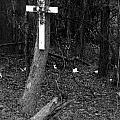 Road Death Cross- La Hwy 15- Louisiana by Doug Duffey