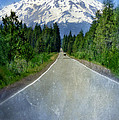 Road Leading To Snow Covered Mount Shasta by Jill Battaglia