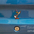 Road Runner Bird Emblem by Thomas Woolworth