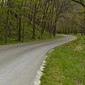 Road Thru Woods Spring 1 by John Brueske