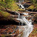 Roaring Fork Falls by Joye Ardyn Durham