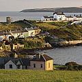 Roches Point Lighthouse In Cork Harbour by Trish Punch