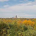 Rochester Skyline Panorama by William Norton