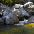 Rock Creek by Frank Wilson