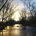 Rock Creek Near Gettysburg by Bill Cannon