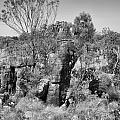 Rock Formations by Douglas Barnard