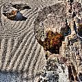 Rock Garden - Hdr by Lynnette Johns