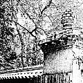 Rockefeller Garden Fence by Lizi Beard-Ward