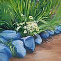 Rockgarden by Sherlyn Andersen