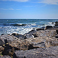Rocks And The Ocean by Mikki Cucuzzo