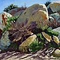 Rocks And Weeds II by Patricia Rose Ford