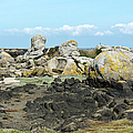 Rocks At Low Tide Iles Chausey by Gary Eason
